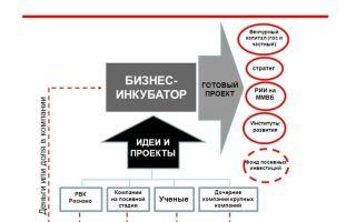 Бизнес-инкубатор — что это, виды в россии и как выбрать