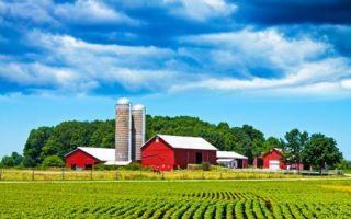 Регистрация кфх 2017: пошаговая инструкция по открытию крестьянского (фермерского) хозяйства