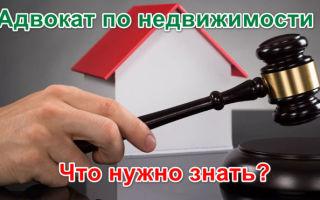 Продажа ООО без долгов и с историей — инструкция и документы