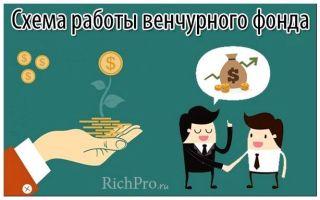 Что такое венчурный фонд — список фондов россии, как привлечь инвестиции