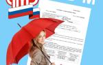 Штрафы за сзв-м: за несвоевременную сдачу, ошибки и как избежать
