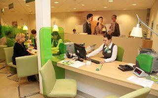 Кредит для малого бизнеса в сбербанке: как получить, условия, отзыв