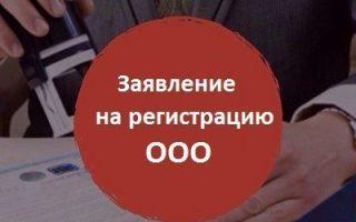 Заявление на регистрацию ооо — форма р11001 скачать