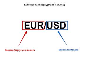 Валютный рынок форекс (forex) — что это такое и как работает