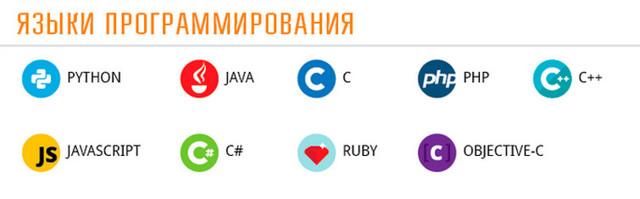 Сколько зарабатывает программист в России и как заработать новичку
