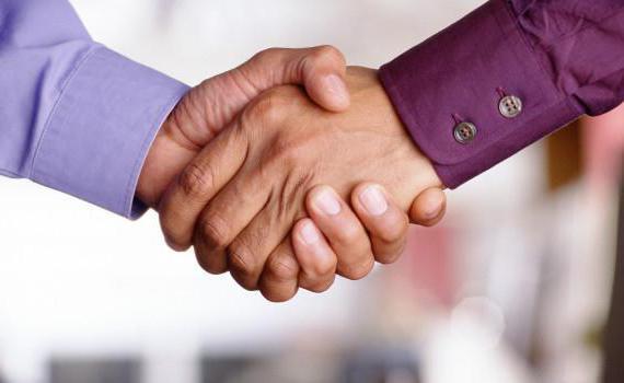 Плюсы и минусы ИП для регистрации бизнеса
