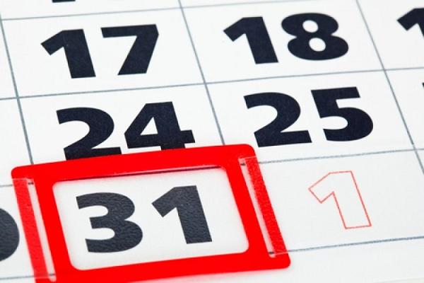 ИП и ООО с НДС - как работать, ставки налога, сроки и отчетность