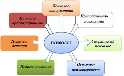 Сколько зарабатывает психолог в России и как заработать психологу