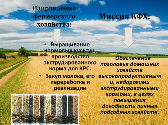 Земля для крестьянского фермерского хозяйства - как получить в аренду