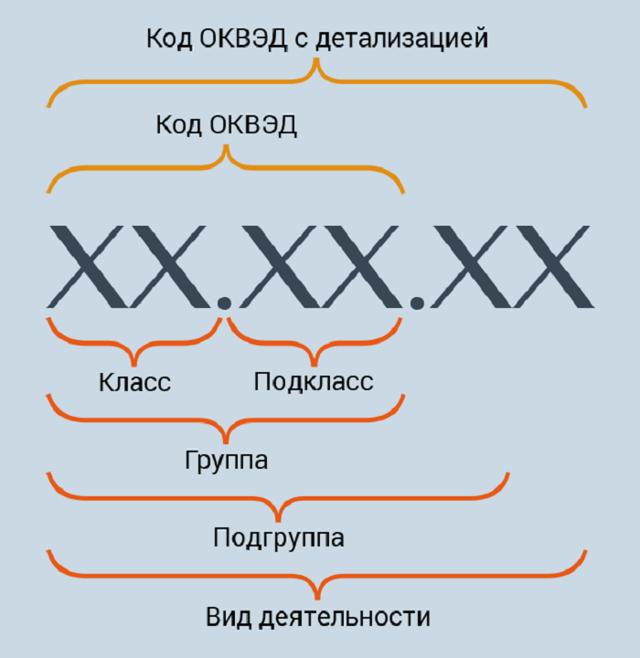 Виды деятельности ИП: классификация, разрешенные и запрещенные