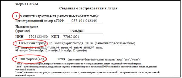 Бланк отчета СЗВ-М - сведения о застрахованных лицах