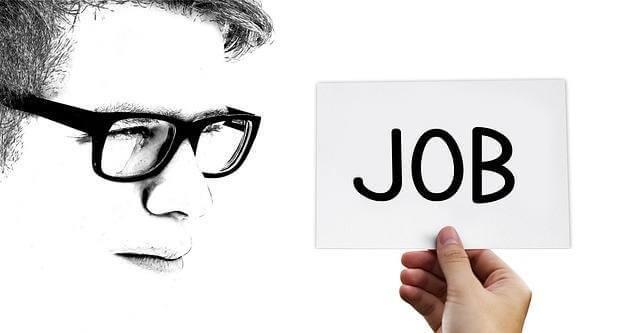 Заработок на Воркзилле: реально ли и сколько можно заработать