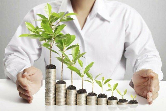 Инвестиции в бизнес и стартапы - как начать с нуля, риски и способы