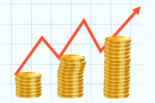 Формирование уставного капитала ООО - пошаговая инструкция